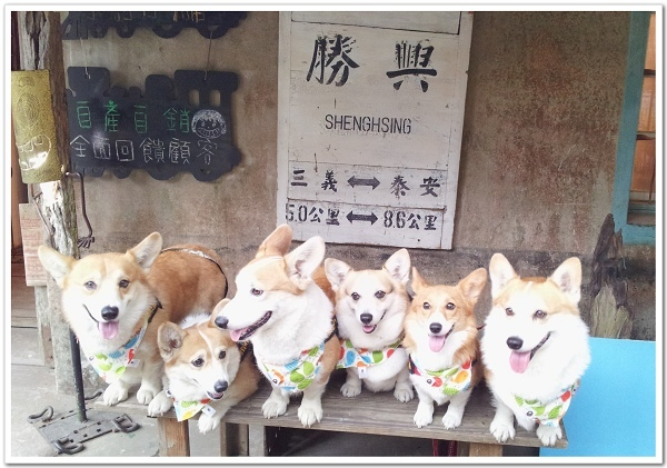 20140309_勝興車站.jpg