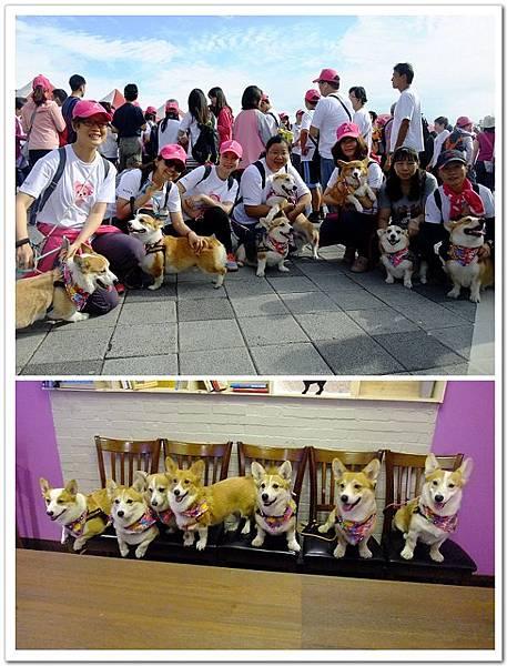 20141025-sony粉紅絲帶公益健走+健走後貳樓吃飯.jpg
