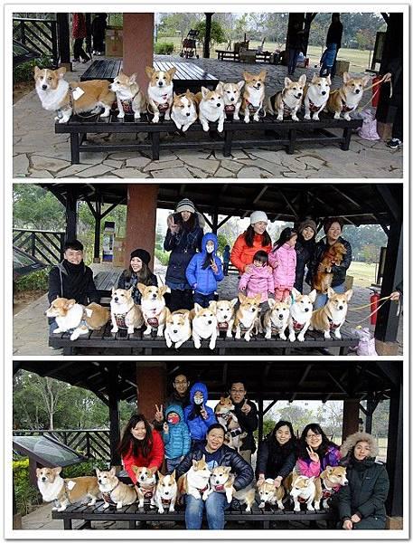 20150208-小狗子生日會@八德埤塘生態公園.jpg