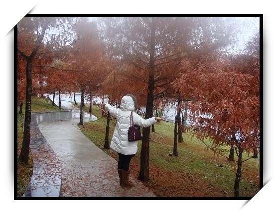 雖然是冬天,但有秋天氣息的步道.jpg