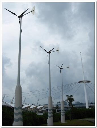 新光碼頭風車.jpg
