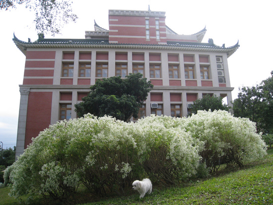 易經大學 (35).jpg
