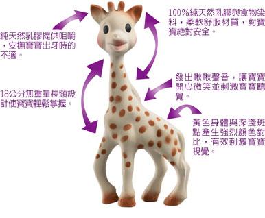 giraffe%20for%20web.jpg