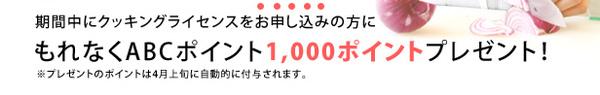 cook_lic_02.jpg