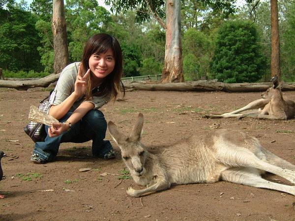 Melody & Kangaroo