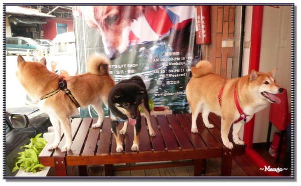 http://f8.wretch.yimg.com/melody5168tw/9/1100845773.jpg