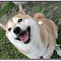 http://f8.wretch.yimg.com/melody5168tw/4/1919018875.jpg