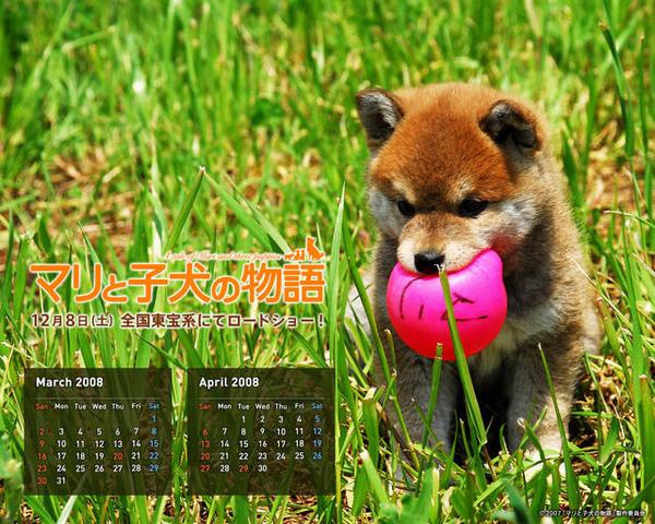http://f8.wretch.yimg.com/melody5168tw/14/1035493994.jpg