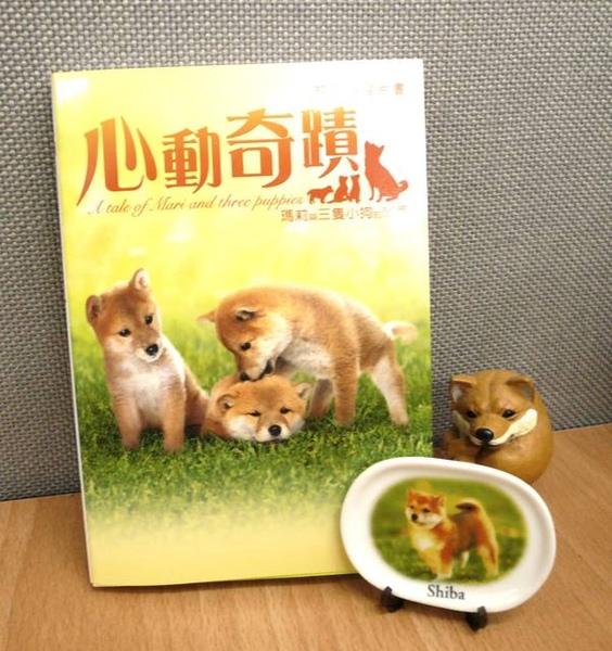 http://f8.wretch.yimg.com/melody5168tw/7/1666839477.jpg