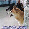 http://f8.wretch.yimg.com/melody5168tw/20/1223280234.jpg