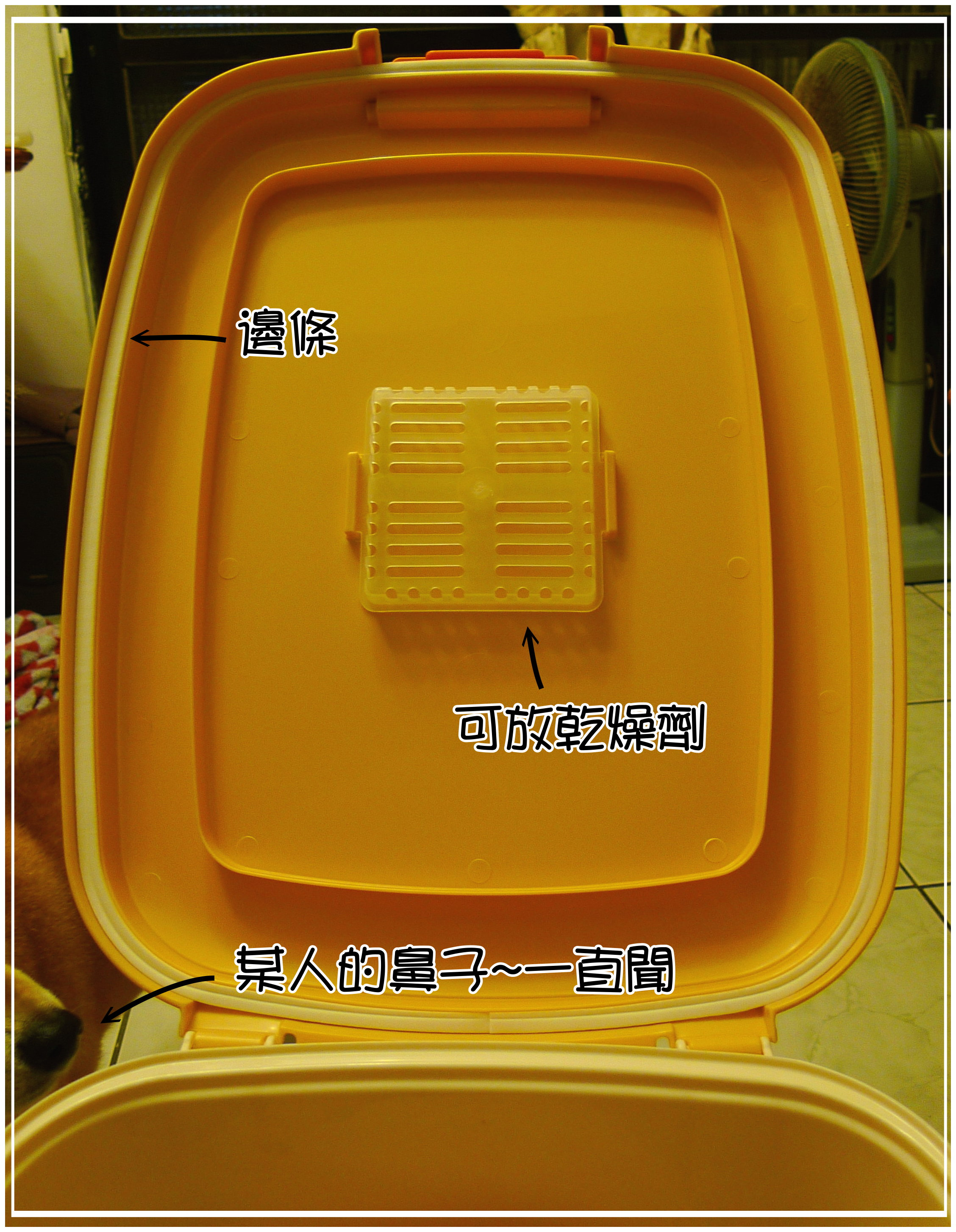 桶子 (2).JPG