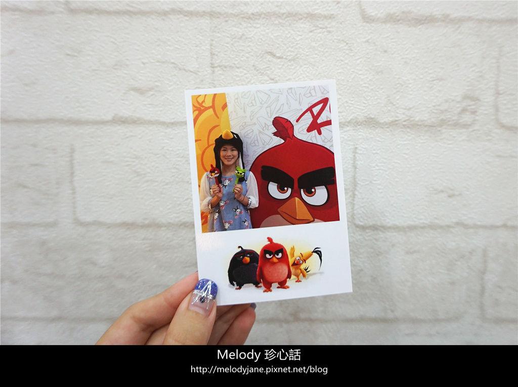 1023台中 Angry Birds forest.jpg