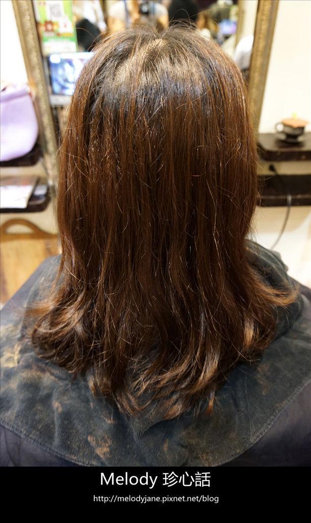 216FIN HAIR.jpg