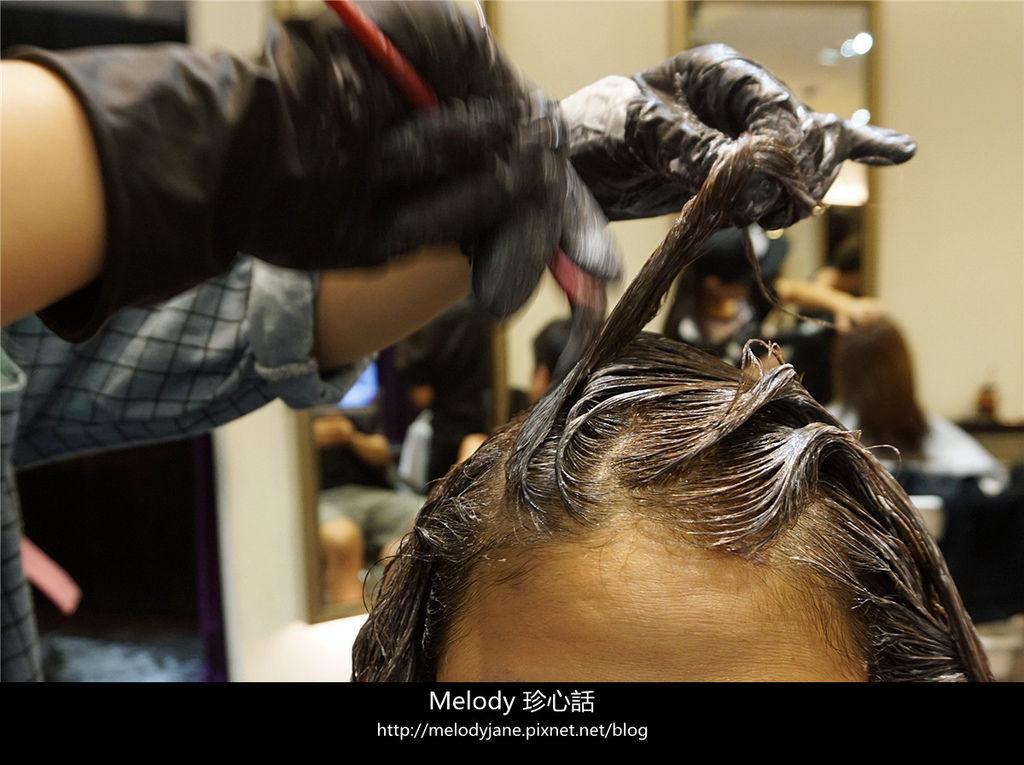 219FIN HAIR.jpg