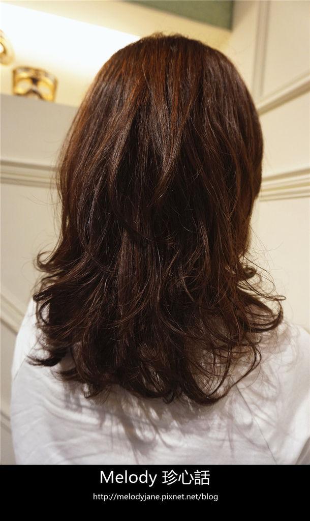 2116FIN HAIR.jpg