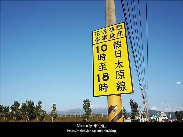 322 2新社花海.jpg