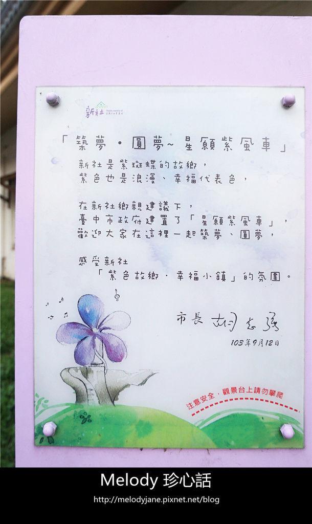 317新社花海.jpg