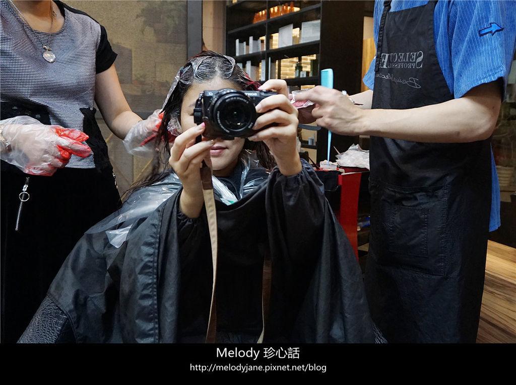 810 2台中 VS. hair.jpg