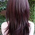 819台中 VS. hair.jpg