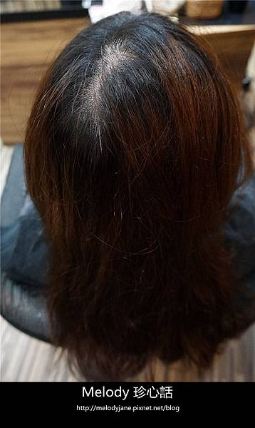 86台中 VS. hair.jpg
