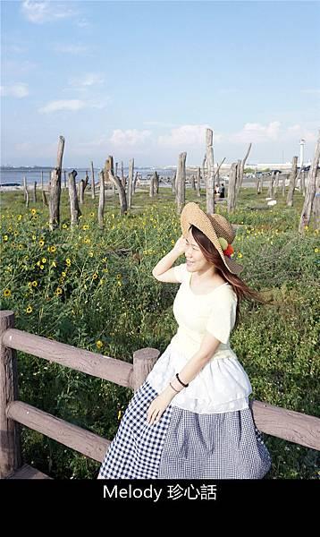 309福寶濕地 紫斑向日葵花海.jpg