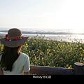 3011 2福寶濕地 紫斑向日葵花海.jpg