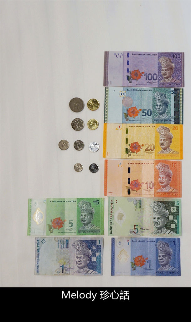 1312 2 馬來西亞自由行.jpg