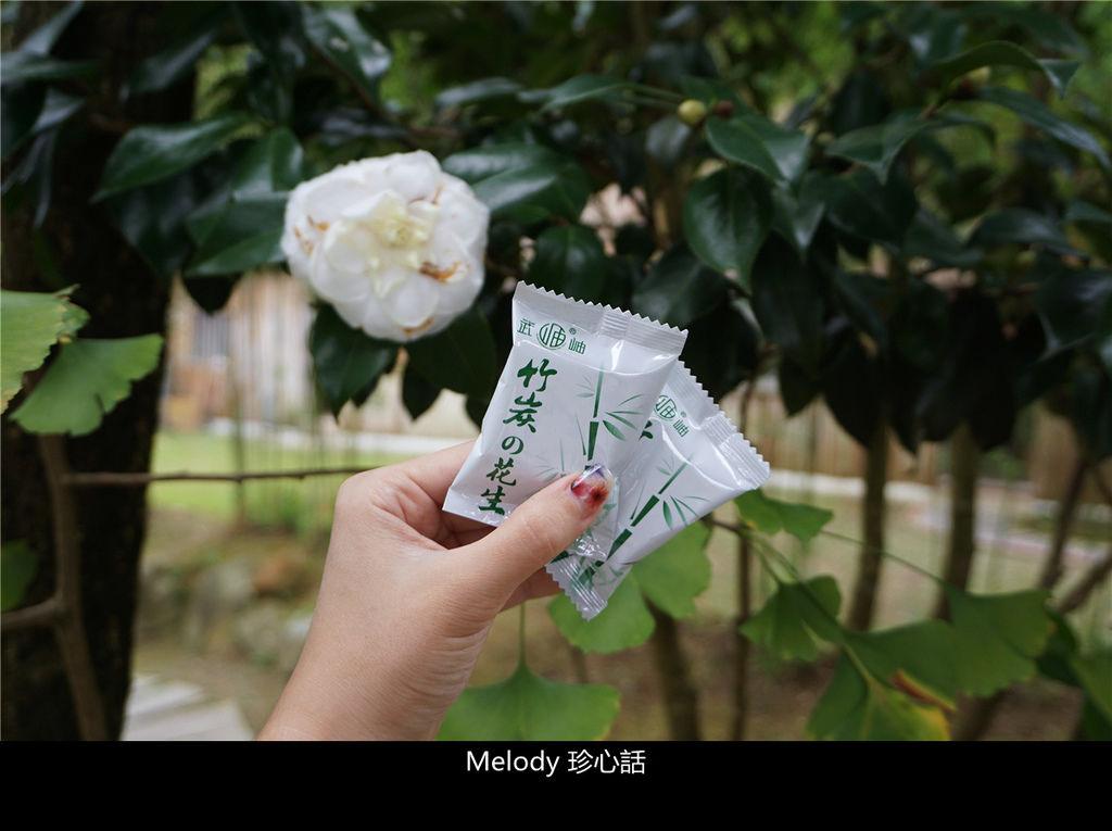 512 南投鹿谷景點 武岫竹炭窯 竹炭花生.jpg