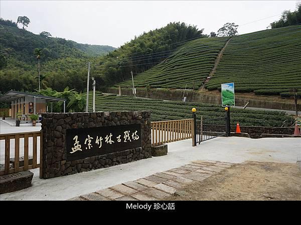 513 南投鹿谷景點 孟宗竹林古戰場.jpg