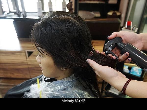 239 台中逢甲染髮 VS. hair.jpg