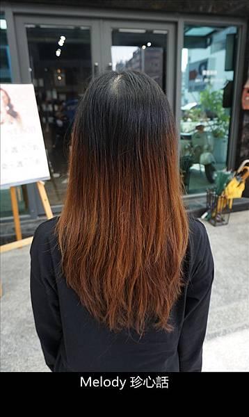 237 台中逢甲染髮 VS. hair.jpg