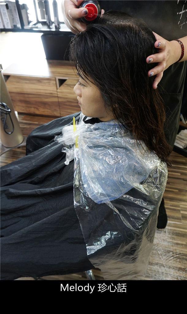238 台中逢甲染髮 VS. hair.jpg
