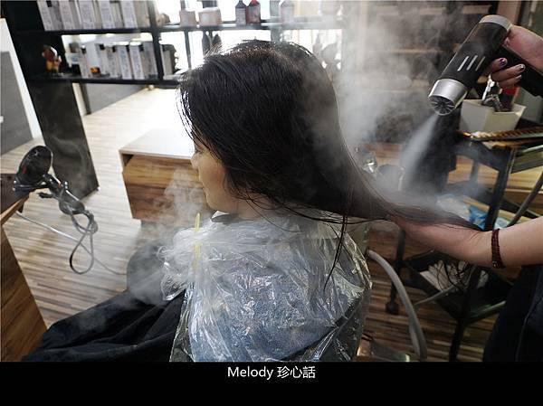 2310 台中逢甲染髮 VS. hair.jpg