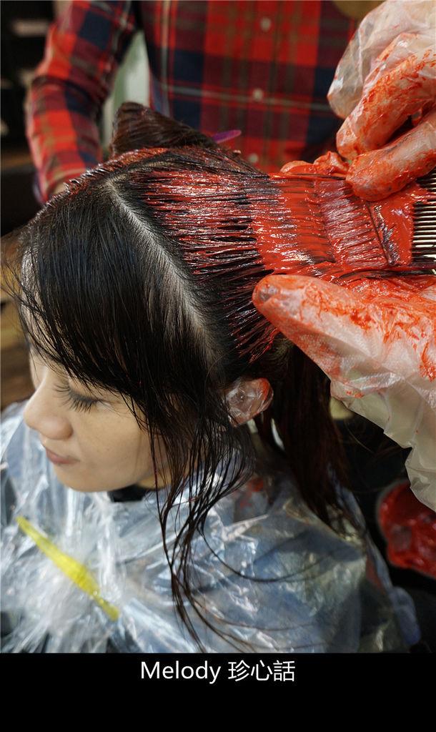 2311 台中逢甲染髮 VS. hair.jpg