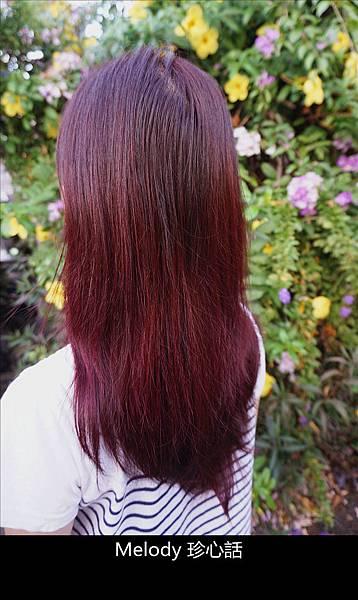 2319 台中逢甲染髮 VS. hair.jpg