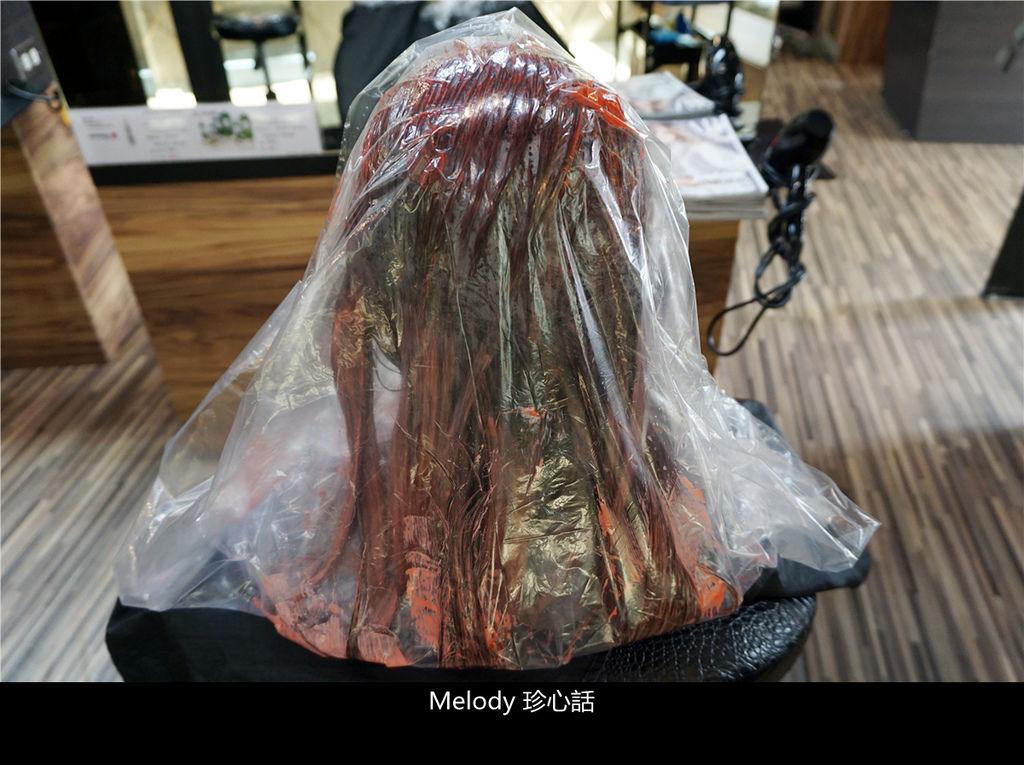2312 台中逢甲染髮 VS. hair.jpg