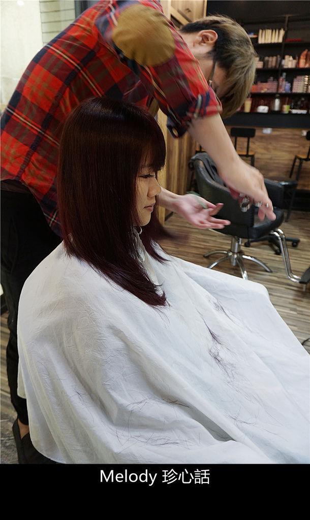 2316 台中逢甲染髮 VS. hair.jpg