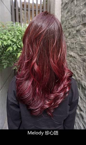 2317 台中逢甲染髮 VS. hair.jpg