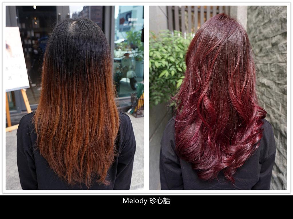 2317-1 台中逢甲染髮 VS. hair.jpg