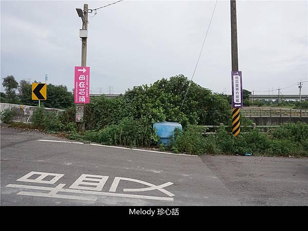 162 紫色地瓜葉愛心彩繪田 地瓜葉茶.jpg