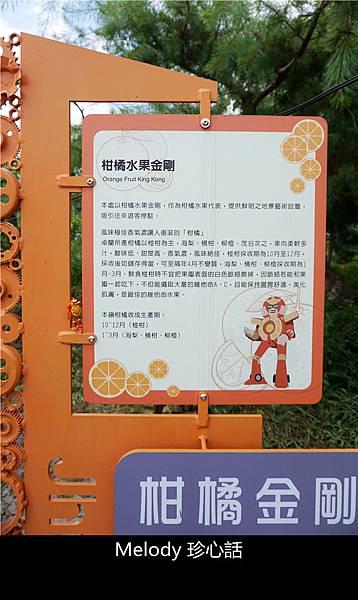 2711 柑橘水果金剛.jpg