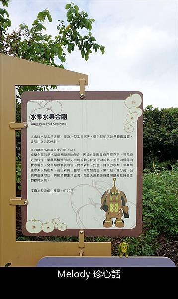 2713 水梨水果金剛.jpg