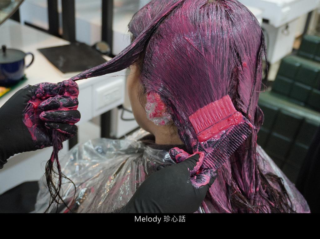 258 SHISEIDO染髮.jpg