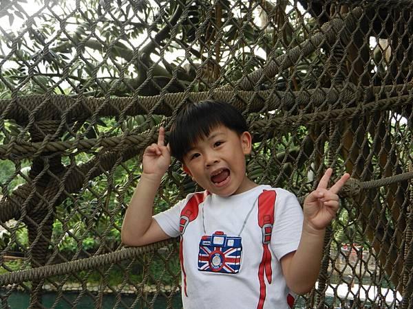 香港四日遊 269