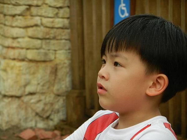 香港四日遊 299