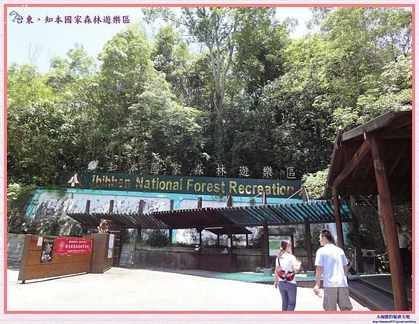 知本國家森林遊樂區-2