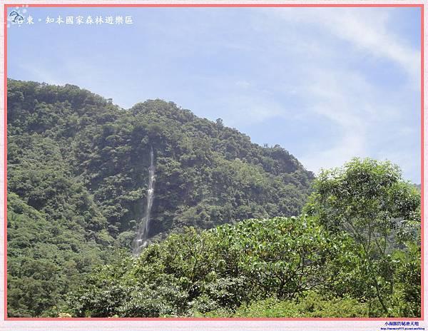 知本國家森林遊樂區-4