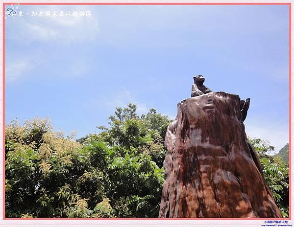 知本國家森林遊樂區-8