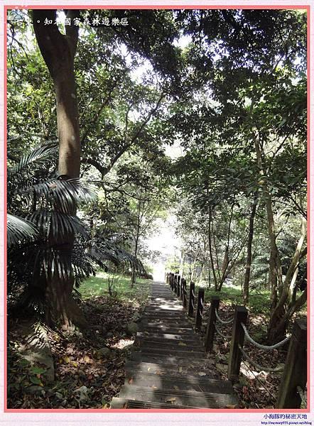 知本國家森林遊樂區-12