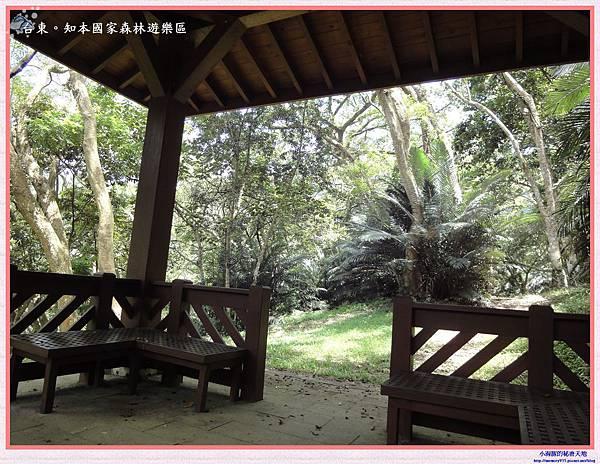 知本國家森林遊樂區-14